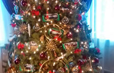 small pic hess tree
